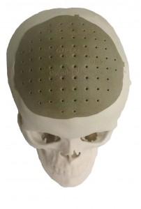 часть черепа 3d